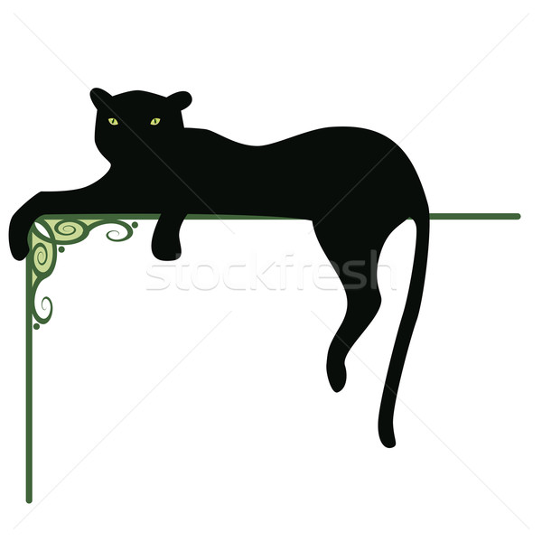 panther Stock photo © tanais