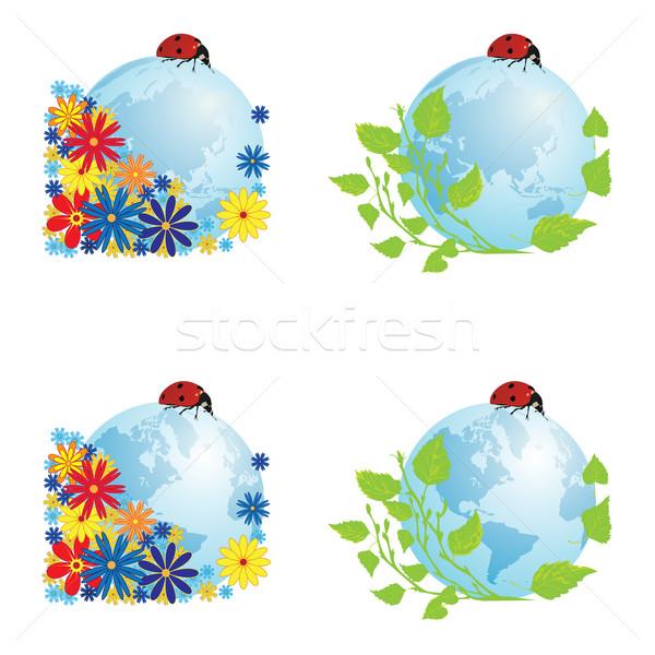 Szett földgömbök katicabogár vektor illusztrációk földgömb Stock fotó © tanais