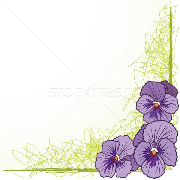 Keret ibolya vektor virágmintás eps 10 Stock fotó © tanais