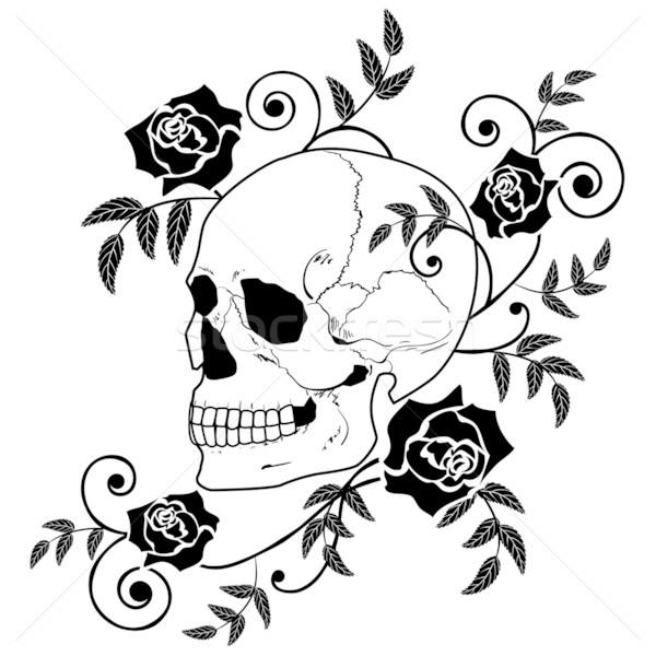 skull and roses Stock photo © tanais