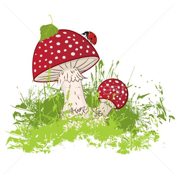 Mantar uğur böceği dizayn yaz yeşil grup Stok fotoğraf © tanais