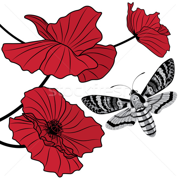death's head hawk moth and red poppy Stock photo © tanais