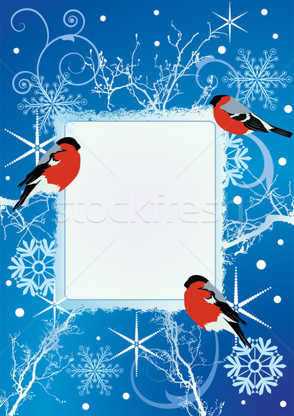 bullfinches Stock photo © tanais
