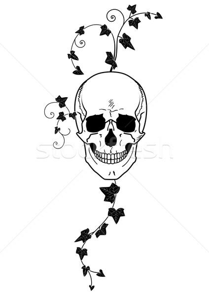 Kafatası sarmaşık siyah beyaz soyut dizayn imzalamak Stok fotoğraf © tanais