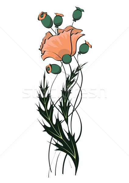 Papoula floral padrão art noveau abstrato folha Foto stock © tanais