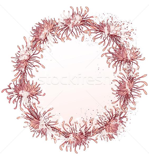 Chrysant frame grunge roze kleuren Stockfoto © tanais