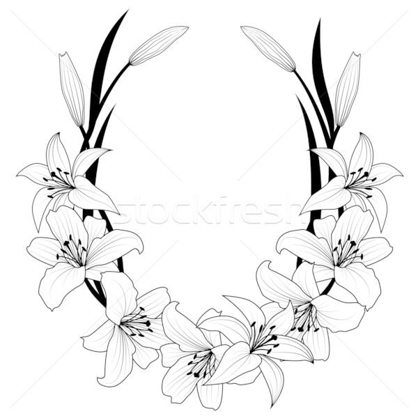 Liliom keret vektor virágok feketefehér színek Stock fotó © tanais