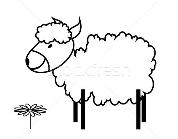 sheep Stock photo © tanais