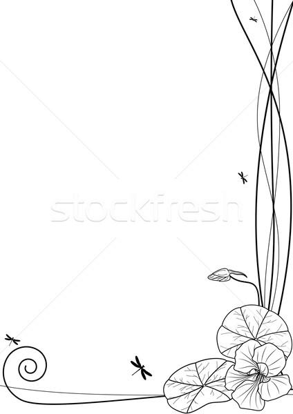 Vecteur blanche noir couleurs jardin fond Photo stock © tanais