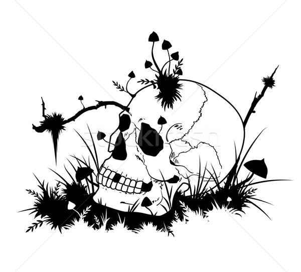 Halloween illustration with skull and mushrooms Stock photo © tanais