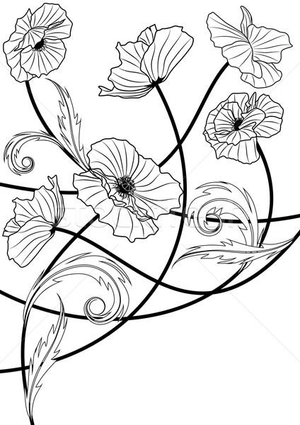 Foto stock: Papoula · vetor · preto · e · branco · cores · flor · projeto