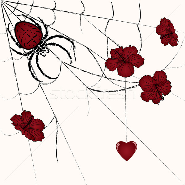 spider and heart Stock photo © tanais