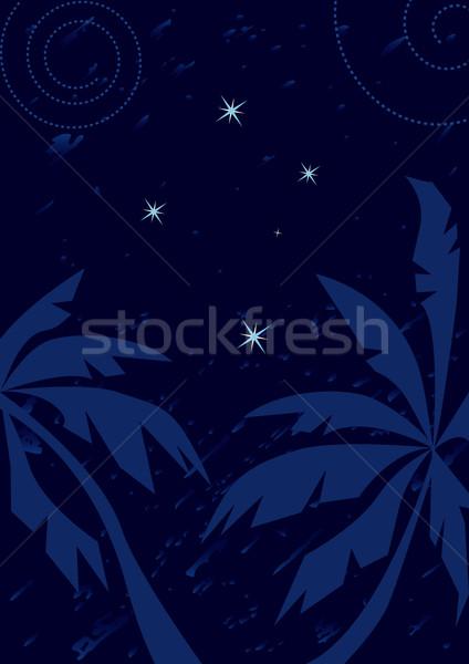 Atravessar ilustração constelação céu palma Foto stock © tanais