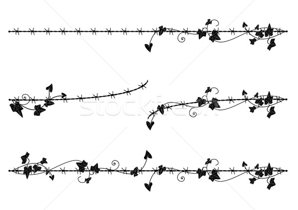 ivy border with barbed wire Stock photo © tanais