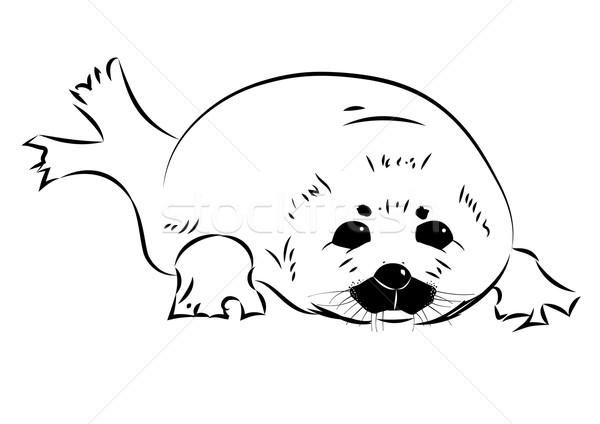 seal baby Stock photo © tanais