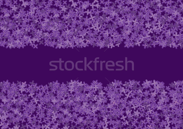 floral banner with lilac Stock photo © tanais