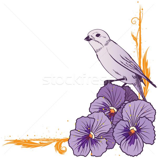 border with  violet pansies and bird Stock photo © tanais