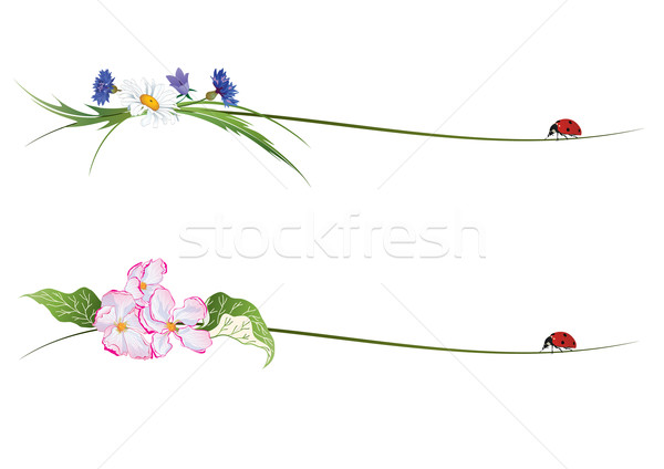 vector vignette with flowers and ladybird Stock photo © tanais