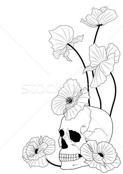 Stock photo: skull and poppies