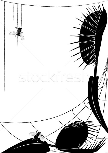 Venus flytrap and fly Stock photo © tanais