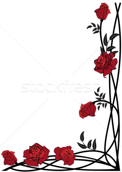 Virágmintás keret rózsák vektor sarok terv Stock fotó © tanais