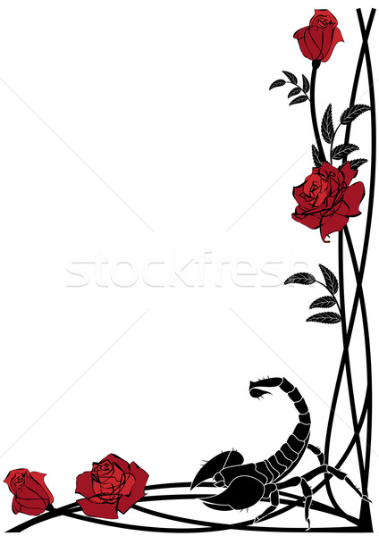 border with roses and scorpion Stock photo © tanais