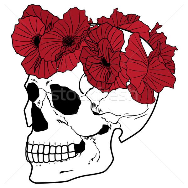 skull and wreath of poppies Stock photo © tanais