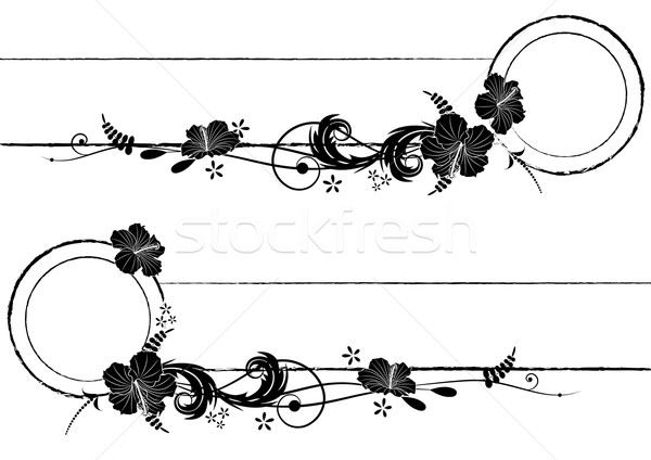set of vector frames with hibiscus Stock photo © tanais