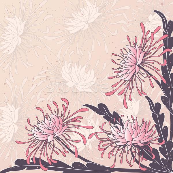 Chrysant vector bloemen bloem abstract Stockfoto © tanais