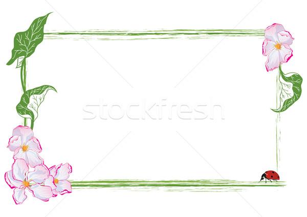 çerçeve elma çiçek uğur böceği vektör eps Stok fotoğraf © tanais