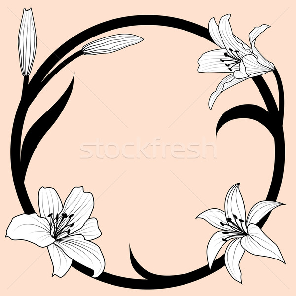 Lírio quadro art noveau estilo preto padrão Foto stock © tanais