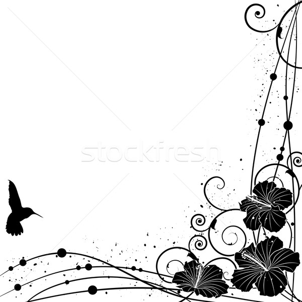 ハチドリ ハイビスカス ベクトル 黒白 色 コーナー ストックフォト © tanais