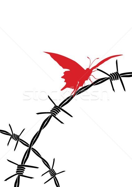 barbed wire and butterfly Stock photo © tanais