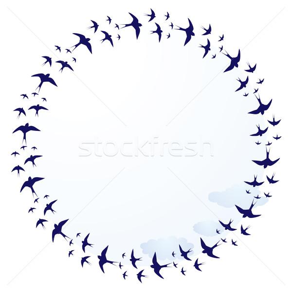 swallows, frame Stock photo © tanais