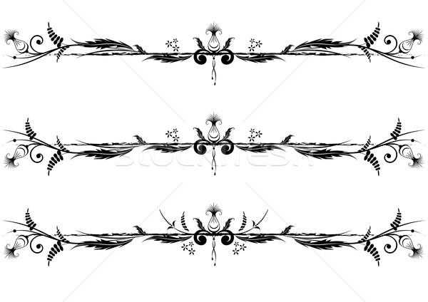 vector floral vignette Stock photo © tanais