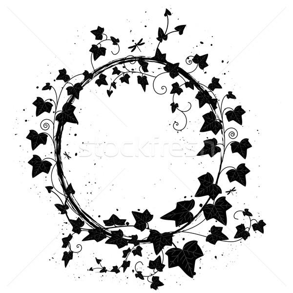 Sarmaşık çerçeve vektör oval şube yusufçuk Stok fotoğraf © tanais