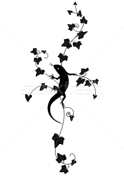 Klimop hagedis vector zwart wit kleur abstract Stockfoto © tanais