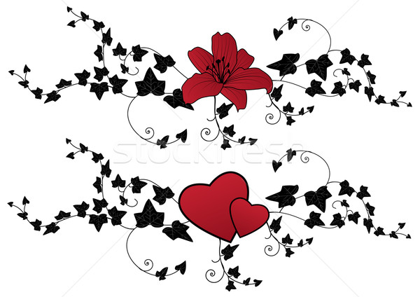 ivy, lily and hearts Stock photo © tanais