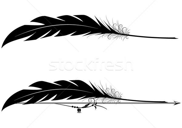 Szett toll toll vektor feketefehér színek Stock fotó © tanais