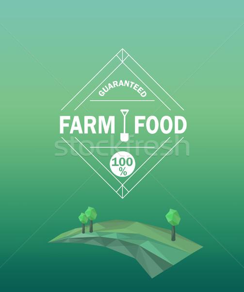 вектора фермы продовольствие стиль Сток-фото © tandaV