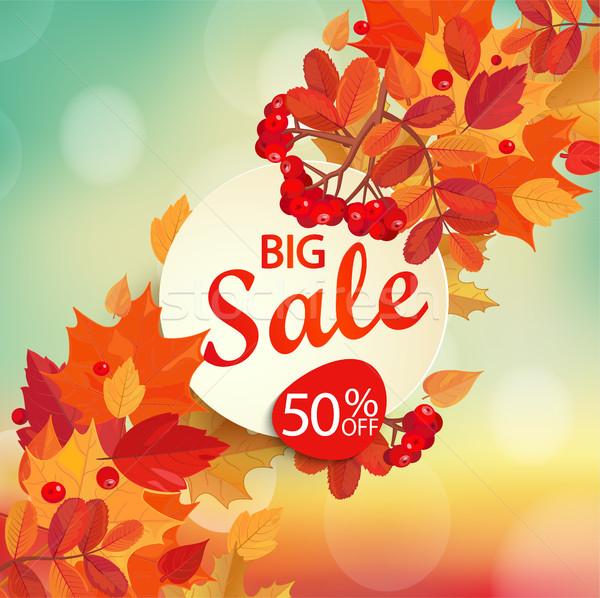 Grande vendita autunno colorato foglie frame Foto d'archivio © tandaV