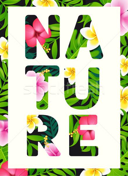 Tropicales imprimer slogan brochures bannières fleur Photo stock © tandaV
