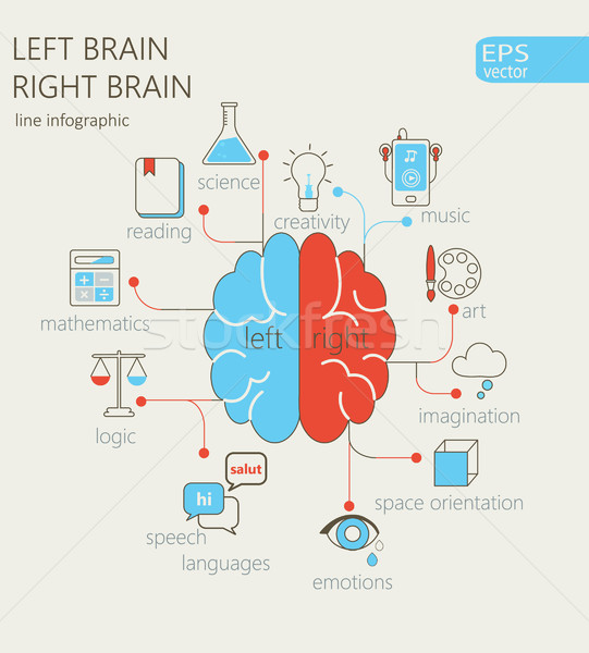 Left and right brain concept. Stock photo © tandaV