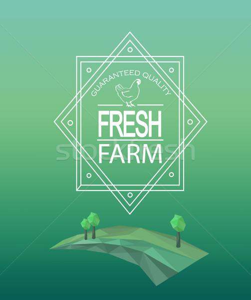 Vector farm fresh logotype. Stock photo © tandaV