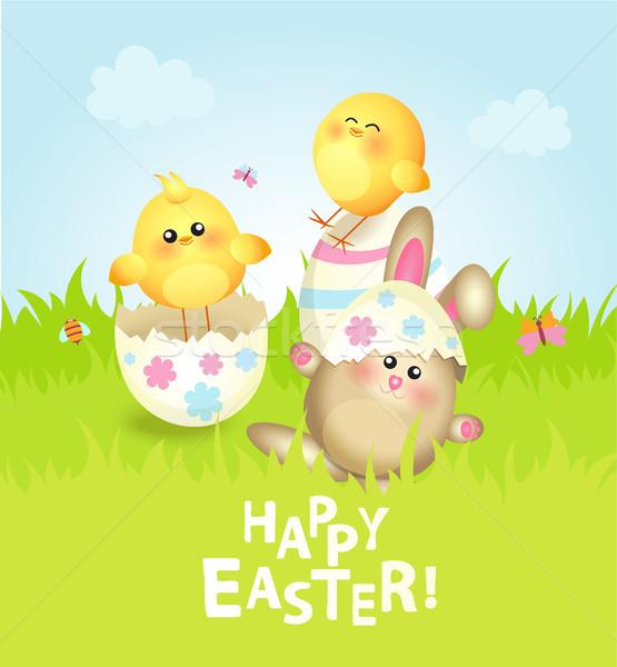 Cartão coelhinho da páscoa ovos campo flor Foto stock © tandaV