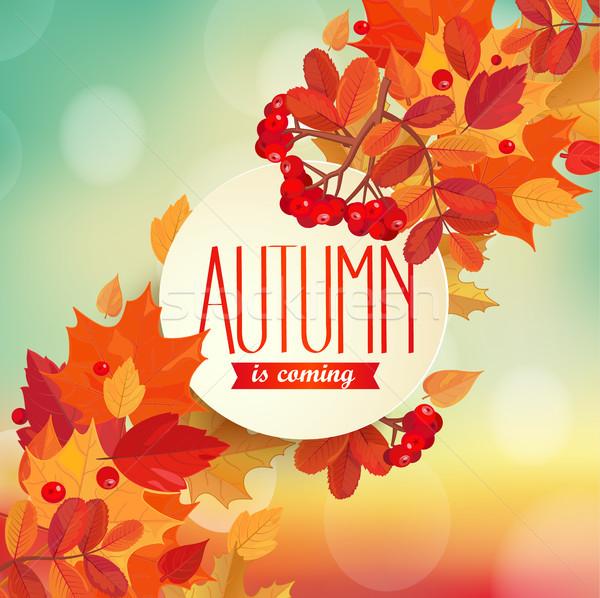 осень красочный листьев кадр текста прибыль на акцию Сток-фото © tandaV
