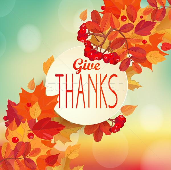 Dar gracias otono colorido hojas marco Foto stock © tandaV