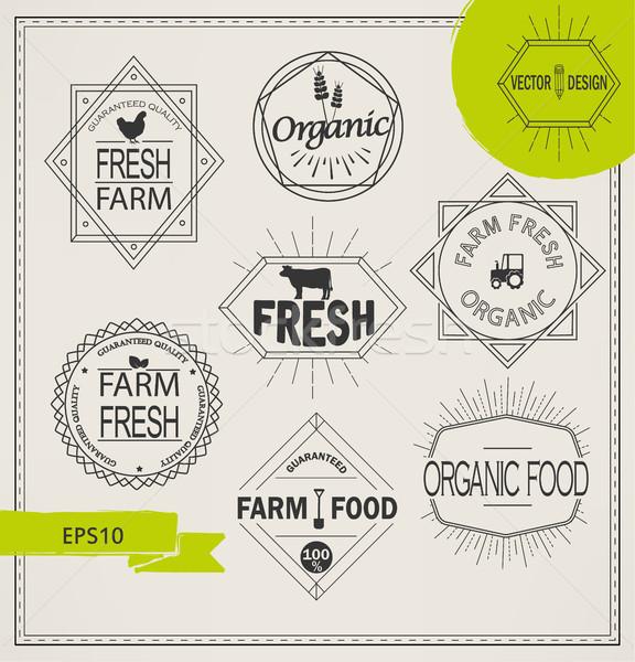сельского хозяйства органический фермы Логотипы вектора свежие Сток-фото © tandaV