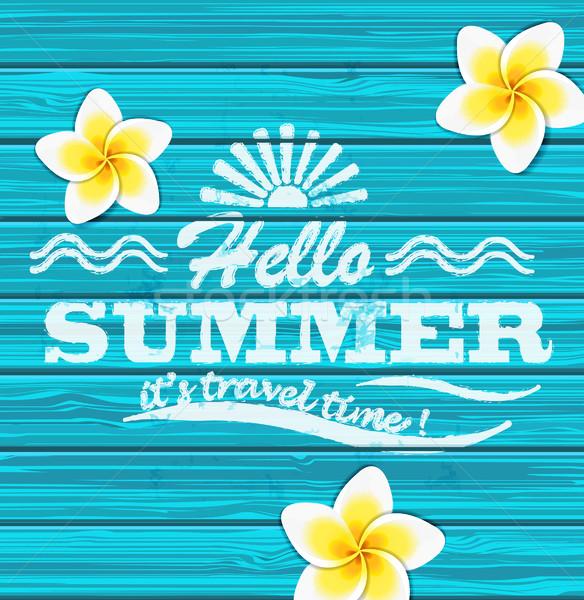 Hallo zomer vector Blauw houten tropische Stockfoto © tandaV