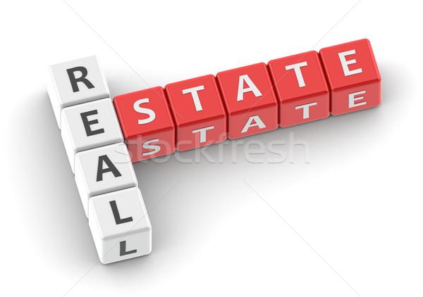 Buzzwords real estate Stock photo © tang90246